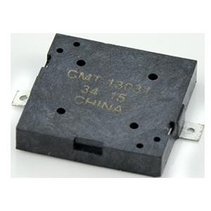 CMT-13031-SMT-TR
